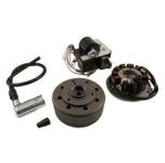 SR50, SR80 Umrüstsatz Vape auf 12V - ohne Batterie, ohne Kugellampen - Magnete vergossen