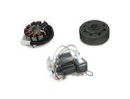 SR50, SR80 Umrüstsatz AKA Electric auf 12V - ohne Batterie, Hupe und Kugellampen - Magnete vergossen